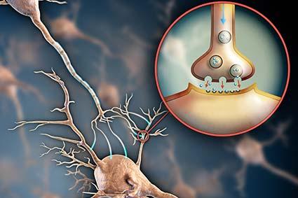 neuraltherapie medimpuls